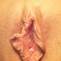 Adult porn pussy